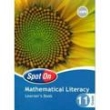9780796243041 - Spot on Mathematical Literacy Gr 11 Learner's Book